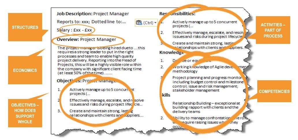 OrgVue - Job Description