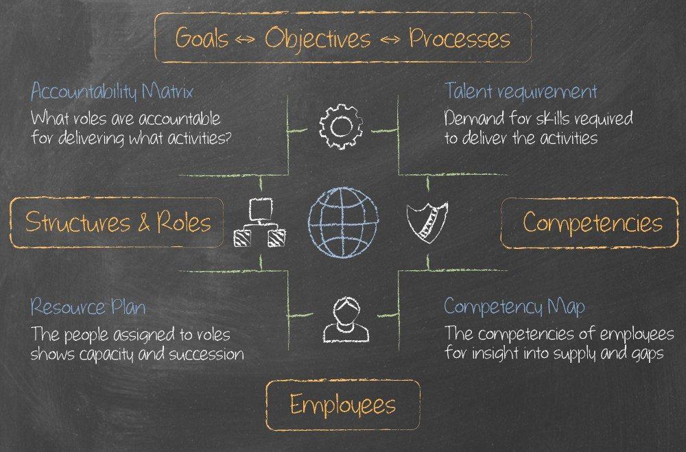 Organisation Design - OrgVue