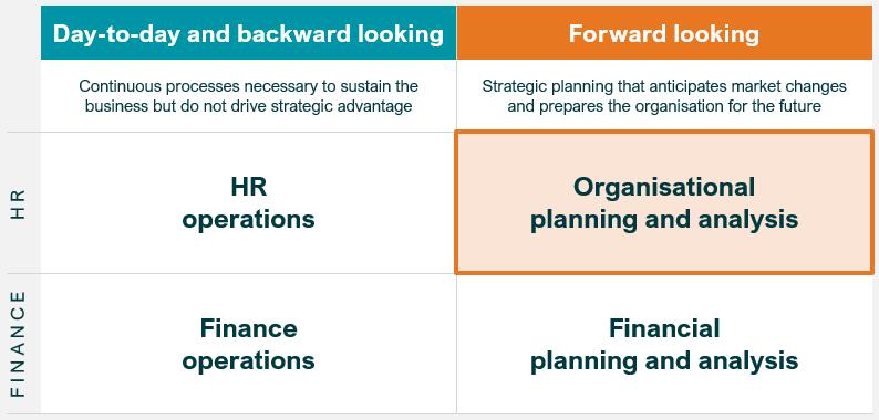 Organizational Planning and Analysis Chart