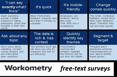 workometry-survey
